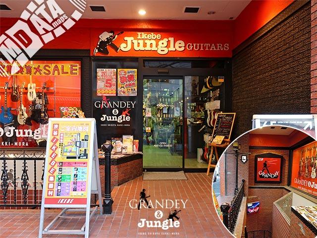 イケベ楽器店 グランディ&ジャングルの写真