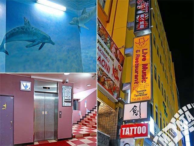 横須賀ヤンガーザンイエスタディの写真
