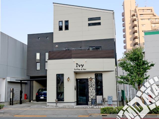 町田アイビーの写真