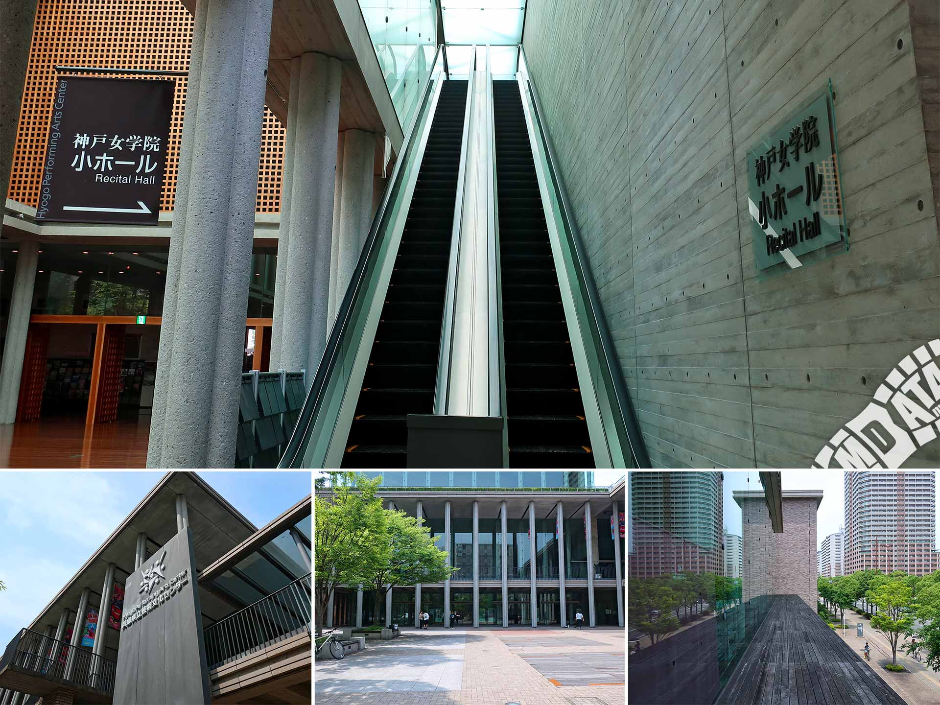文化 兵庫 県立 センター 芸術