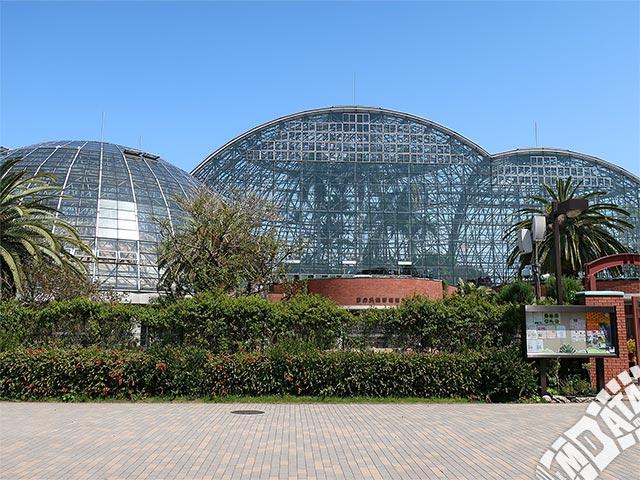 夢の島熱帯植物館の写真