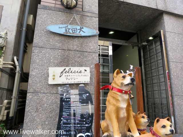 Live Garege 秋田犬の写真