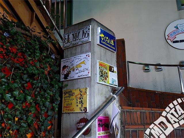 柴崎さくらんぼの写真