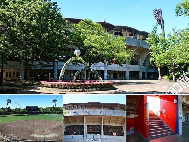 バッティングパレス相石スタジアムひらつかの写真