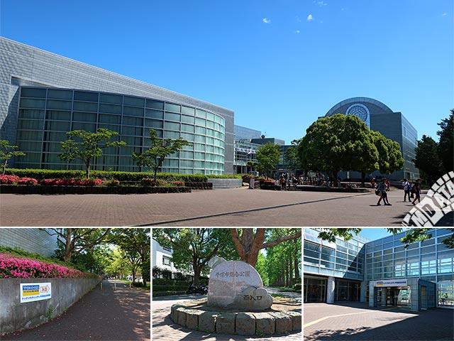 トッケイセキュリティ平塚総合体育館の写真