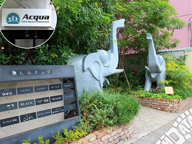 神戸Acquaの写真