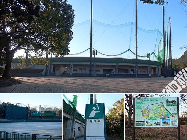青葉の森スポーツプラザ野球場の写真