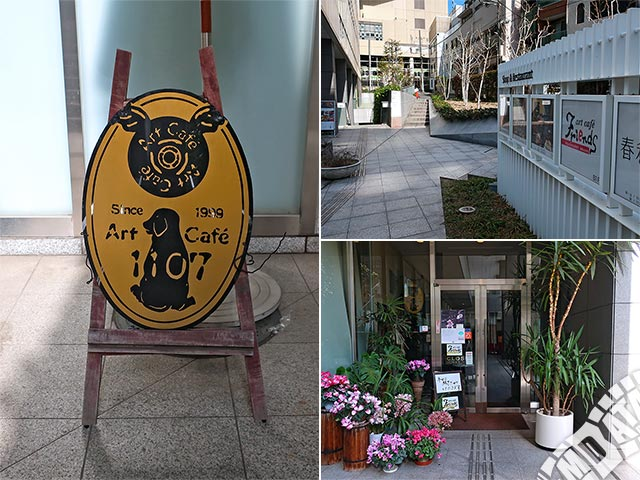 恵比寿アートカフェフレンズの写真
