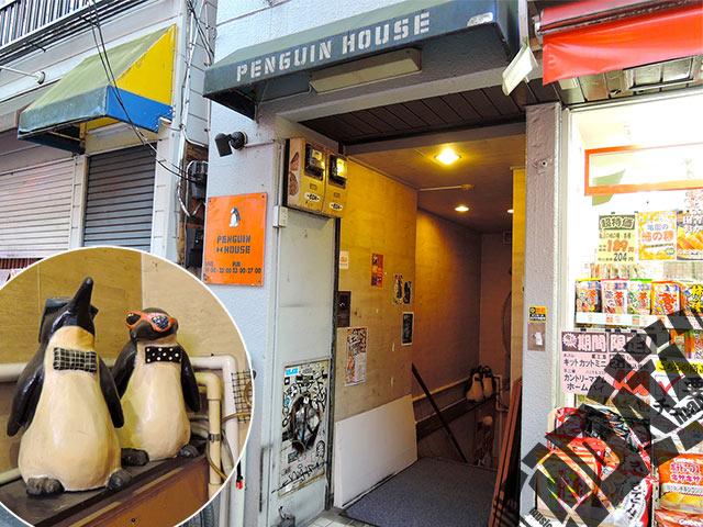 高円寺ペンギンハウスの写真